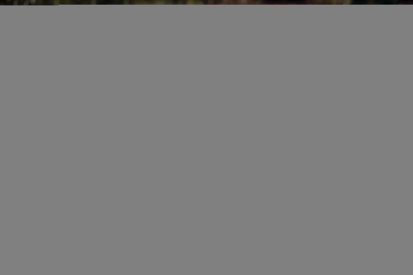 2017 Supercars Championship Round 8.  Ipswich SuperSprint, Queensland Raceway, Queensland, Australia. Friday 28th July to Sunday 30th July 2017. James Moffat, Garry Rogers Motorsport.  World Copyright: Daniel Kalisz/ LAT Images Ref: Digital Image 280717_VASCR8_DKIMG_8252.jpg