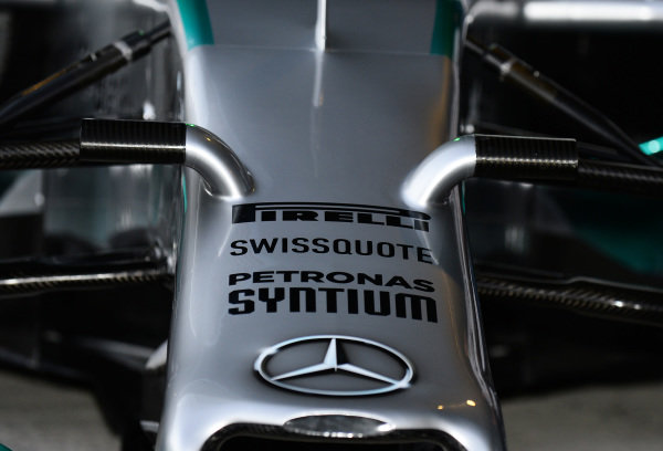 Mercedes AMG F1 W05 nose detail. Formula One Testing, Jerez, Spain, Day One, Tuesday 28 January 2014.