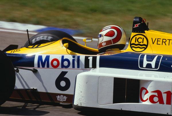 1987 German Grand Prix.Hockenheim, Germany.24-26 July 1987.Nelson Piquet (Williams FW11B Honda) 1st position.Ref-87 GER 15.World Copyright - LAT Photographic