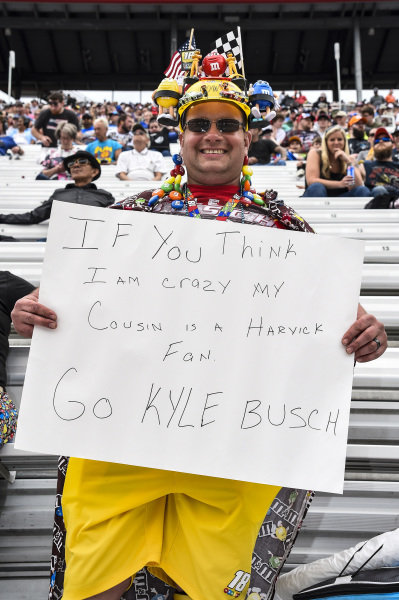 #18: Kyle Busch, Joe Gibbs Racing, Toyota Camry Skittles, race fan